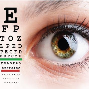 WP-vision